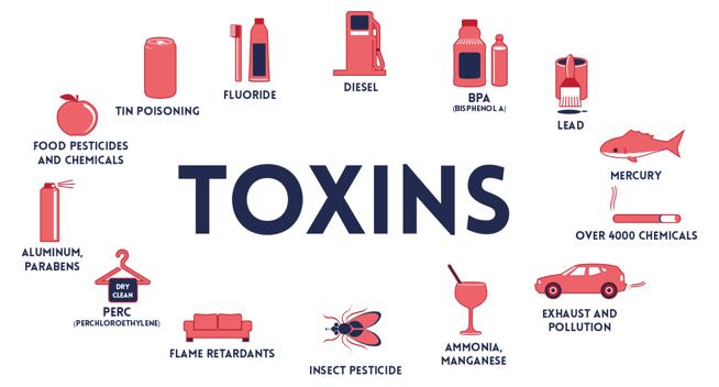 buikvet verliezen lukt niet door toxische stoffen