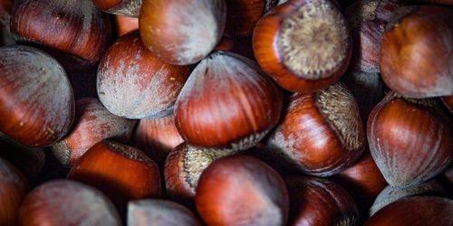 Hazelnoten zijn één van de gezondste noten die je kan eten.