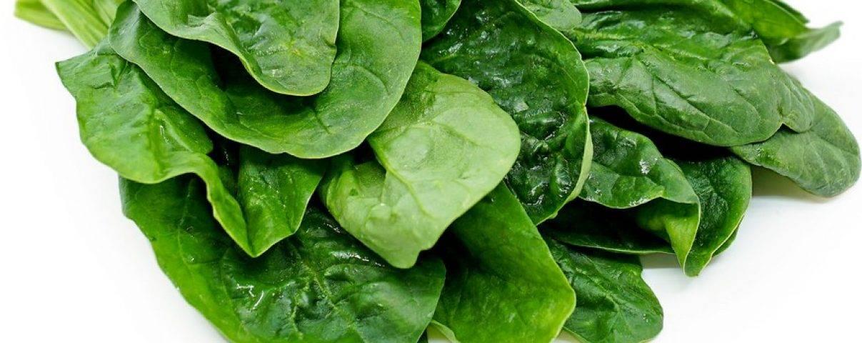 Spinazie is een gezonde groene bladgroente