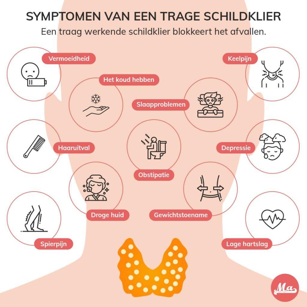Je kan een trage schildklier herkennen aan diverse symptomen, aankomen of niet afvallen, haaruitval, vermoeidheid, spierpijn, depressie, lage hart slag en obstipatie.