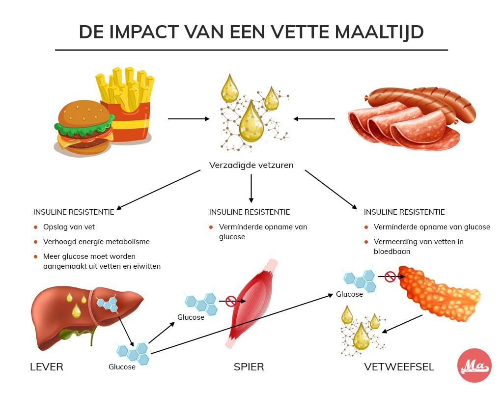 Schematische weergave van insuline resistentie veroorzaakt door verzadigd vet eten.