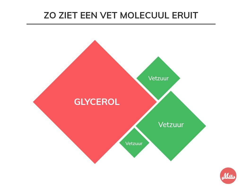 Verschillende soorten vet hebben verschillende moleculen.