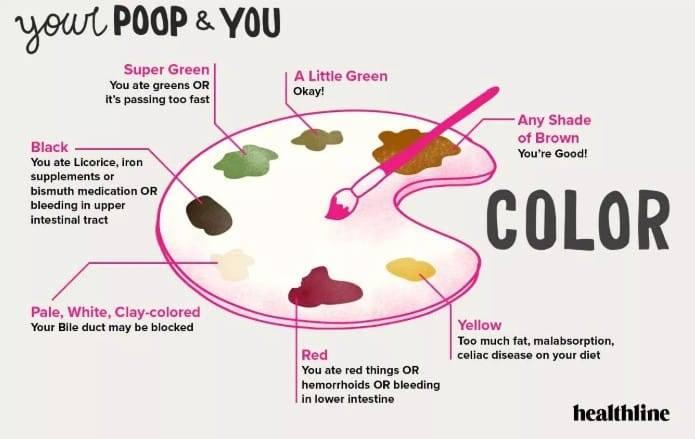 Wat zegt groene, gele of zwarte poep over je gezondheid en voeding patroon