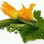 Vistajine met groenten